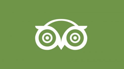 Couleur logo TripAdvisor