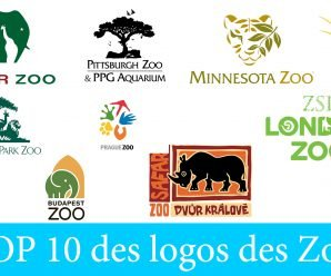 🦓 TOP 10 des logos des Zoos