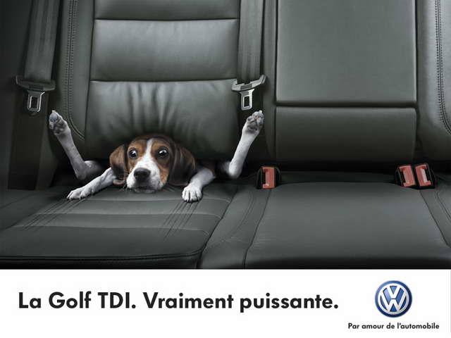 Volkswagen-publicité-chien